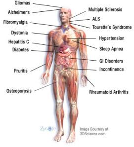 Medicinal Help