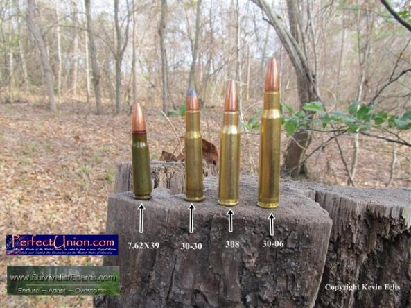 30-caliber-survival-rifle b ammo